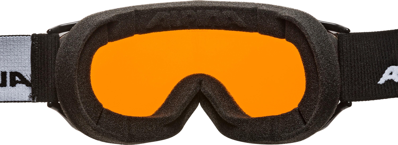 Alpina Challenge 2.0 Doubleflex S2 Goggle black transparent  c5eeefeec1a